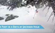 Jackson Hole Deep Pow